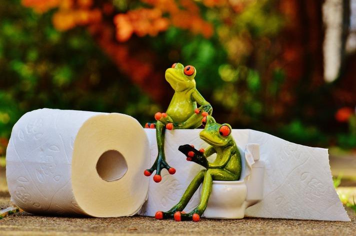 frog-1037714_1920.jpg