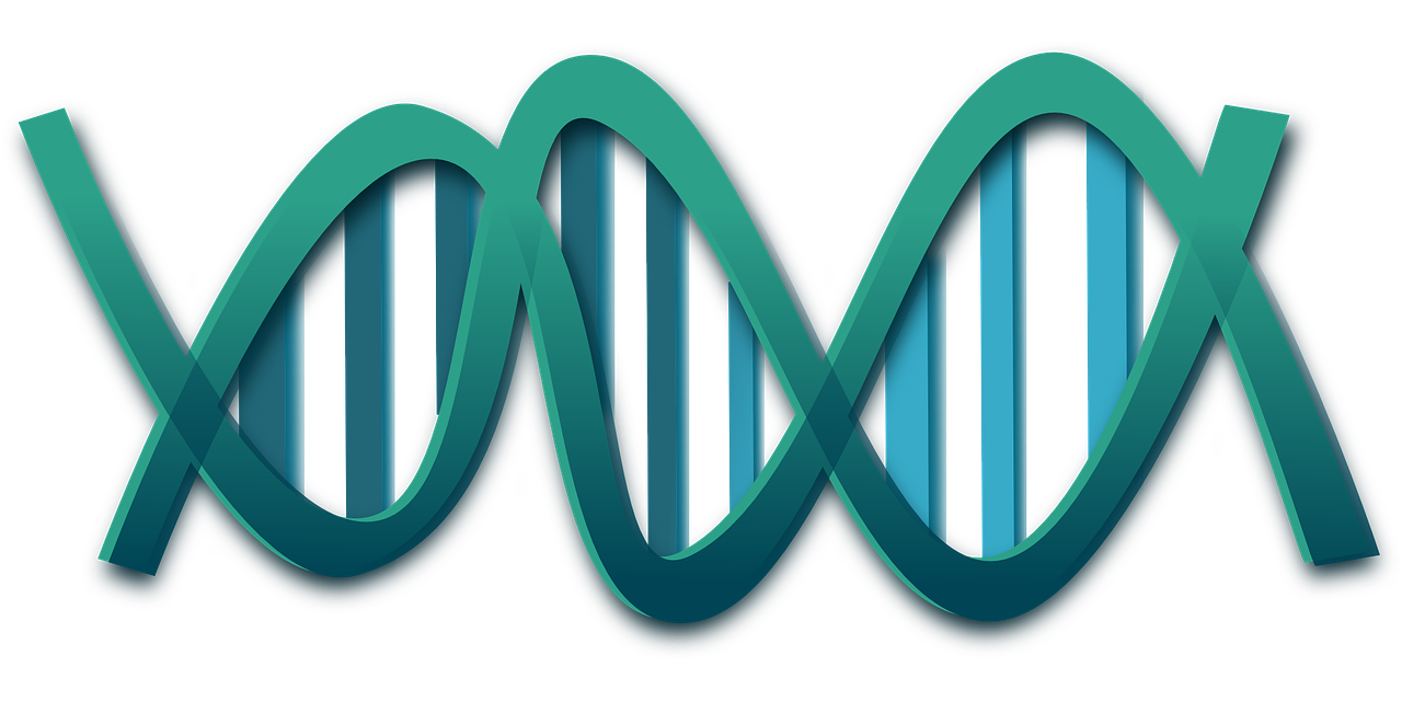 The first genetically engineered humans might not have their DNA tweaked.png