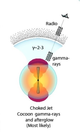 The energetic jet impacting an expanding spherical cocoon of material could successfully explain the observed radio and x ray light curves. (image credit K. P. Mooley et.al.)